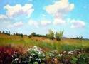 Адаменко О.П. «Облака». Холст, масло.