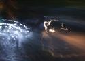 Манжелей В.Ю. «Ночное такси»
