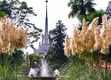 Город Сочи (фото Манжелей В.Ю.)