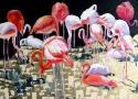 Власенко Е.В. «Фламинго». Холст, масло, 60х70, 2010 год