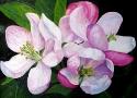Власенко Е.В. «Весна». Холст, масло, 30х40, 2010 год