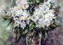 Полина Жебелева «29-я соната Бетховена». Бумага, акварель, 16х20, 2001 год