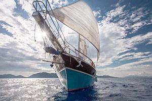 Парусные корабли с художниками на борту